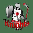 Kingstoncityknights